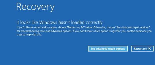 Windows Recovery screen after BSOD error