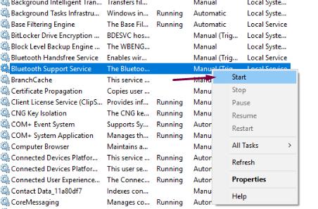 Start Bluetooth Support Service