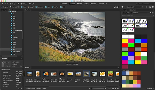 Adobe Bridge