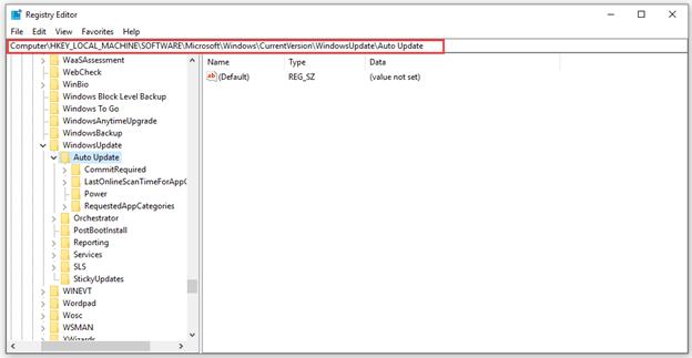auto update key in HKEY-local-machine