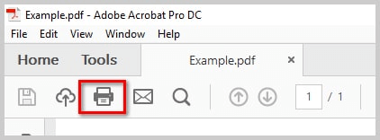 Use the Image option in Acrobat Reader