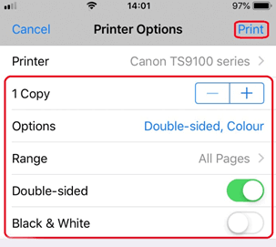Tap on the Print option present on the top-right corner