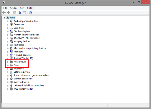 Use the Device Manager to Update - Click on Print and Print Queues