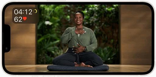 Meditation led by experts